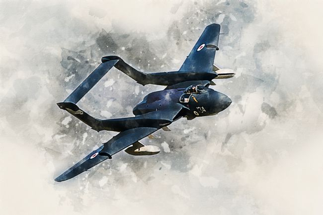 James Biggadike | Sea Vixen - Painting