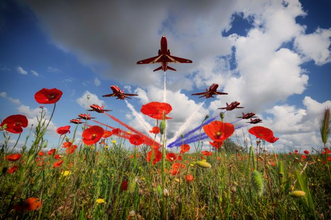 James Biggadike | Red Arrows Poppy Fly Past