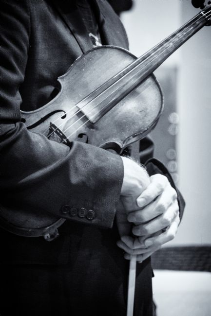 Lynn Bolt | The Violinists Hands