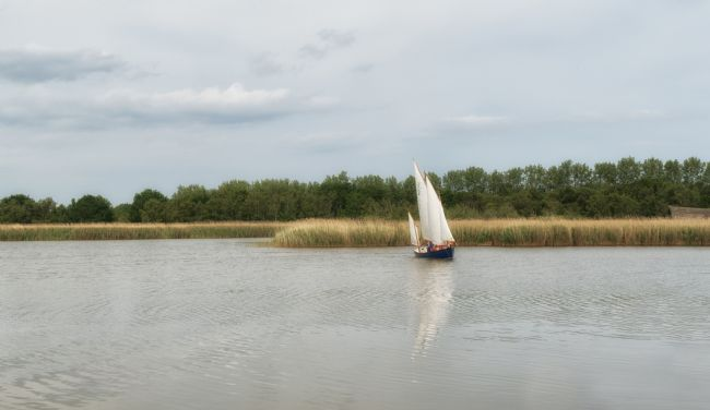 Lynn Bolt | Norfolk Broads